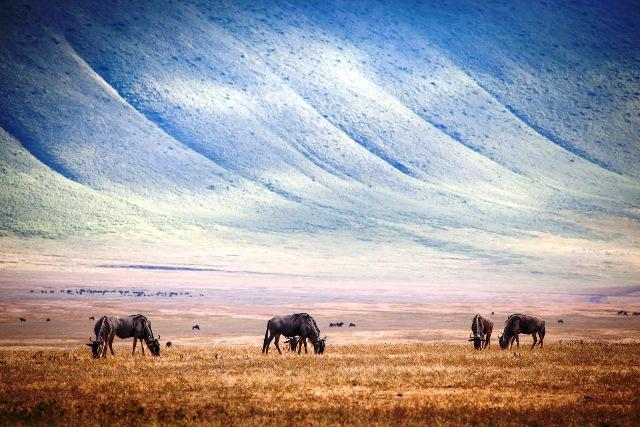 NgorongoroCrater-1